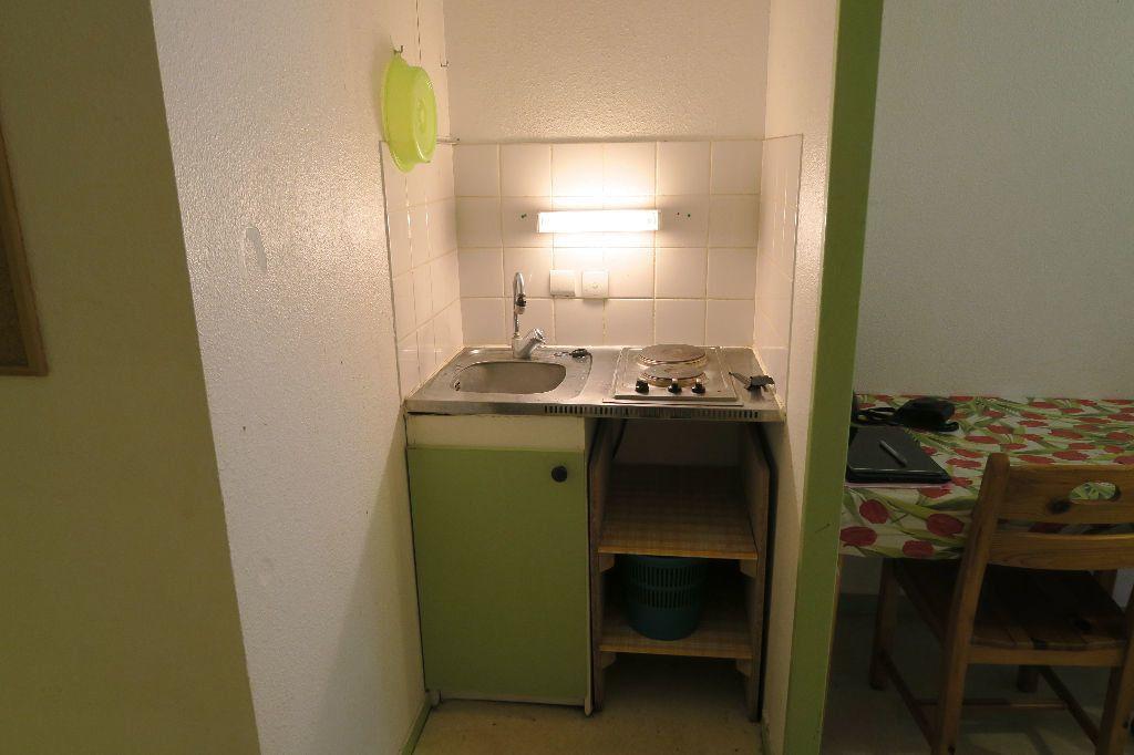 Appartement à louer 1 19.12m2 à Lyon 4 vignette-3