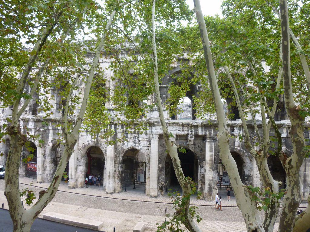 Appartement à louer 1 13.78m2 à Nîmes vignette-1