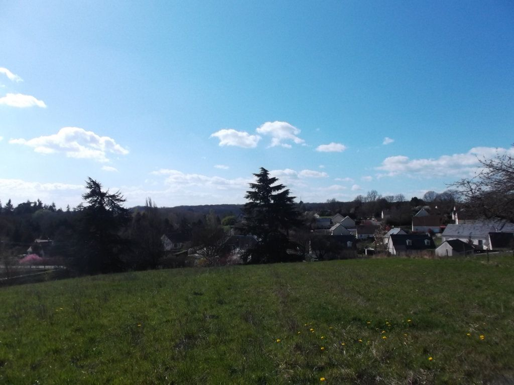 Terrain à vendre 0 4719m2 à Auzouer-en-Touraine vignette-2