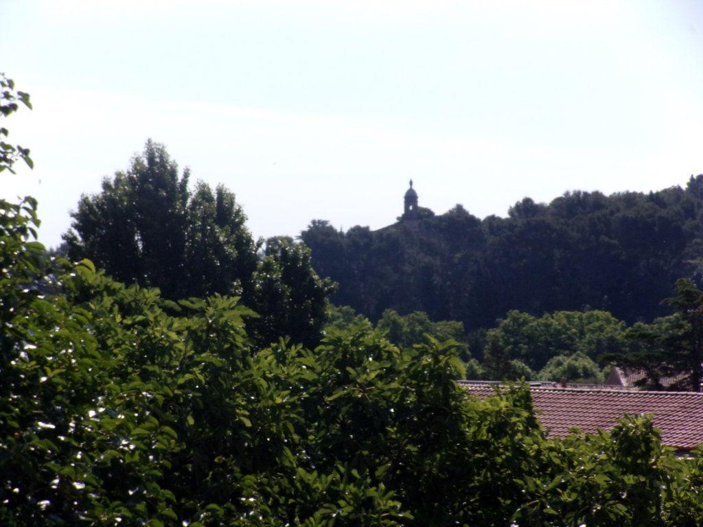 Maison à vendre 10 255m2 à Clermont-l'Hérault vignette-8