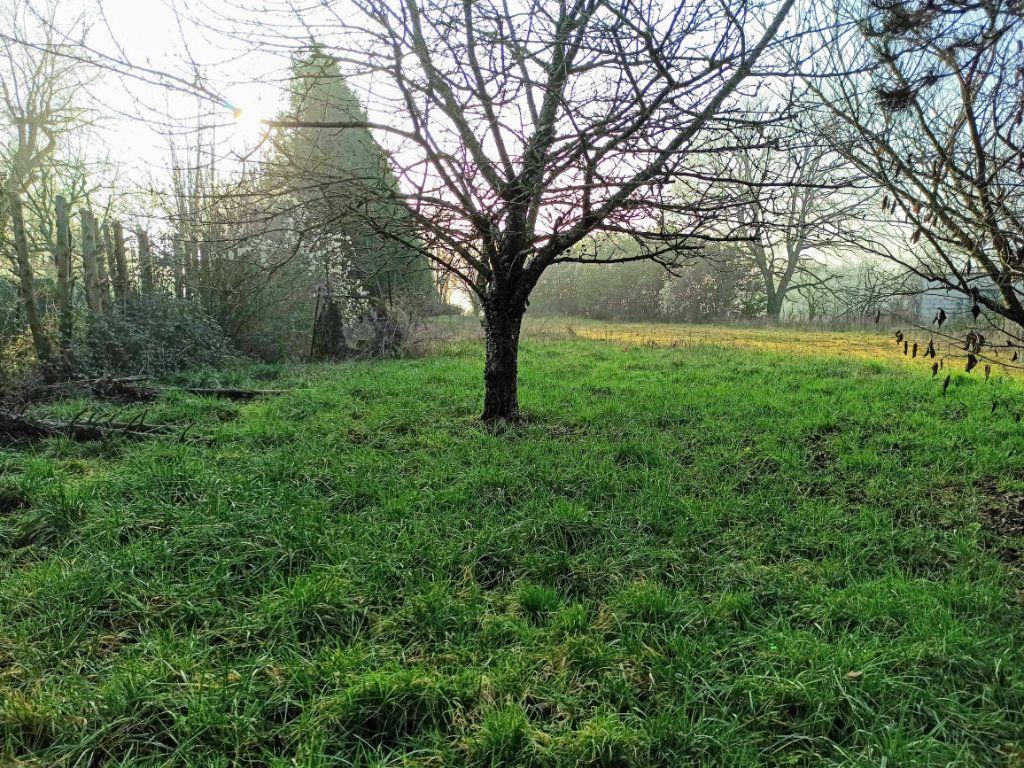 Terrain à vendre 0 1455m2 à Lizy-sur-Ourcq vignette-2