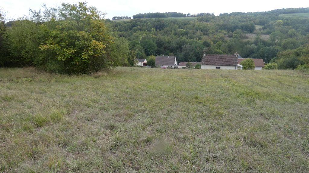 Terrain à vendre 0 4990m2 à Chézy-sur-Marne vignette-2