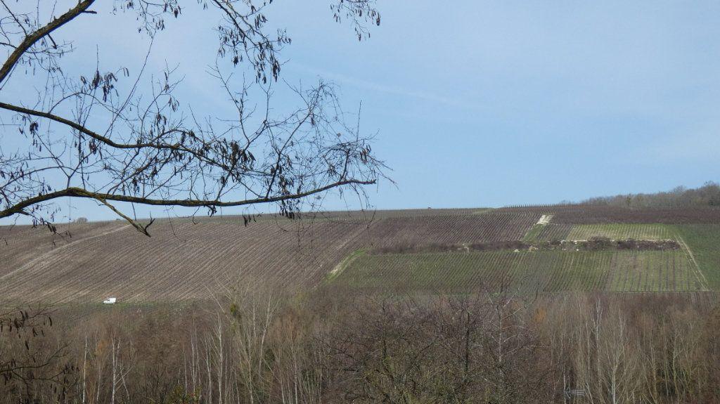 Terrain à vendre 0 1200m2 à Essômes-sur-Marne vignette-3