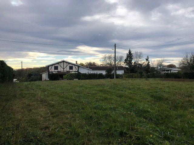 Terrain à vendre 0 1035m2 à Saint-Loubouer vignette-2