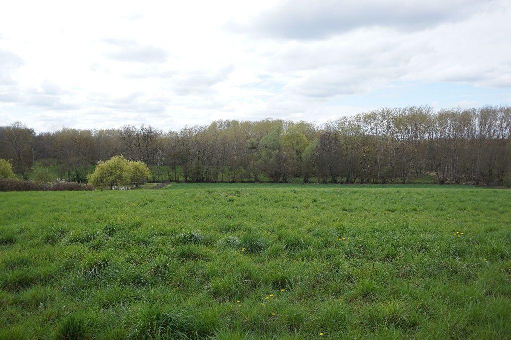 Terrain à vendre 0 2901m2 à Châtillon-Coligny vignette-1