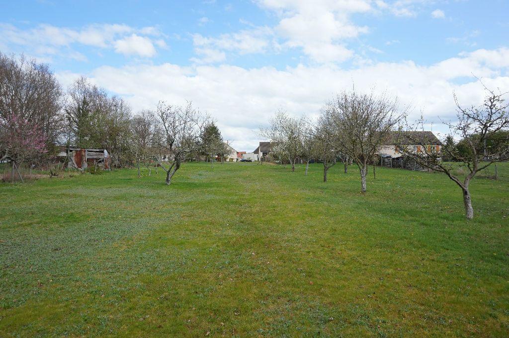 Terrain à vendre 0 2901m2 à Châtillon-Coligny vignette-3