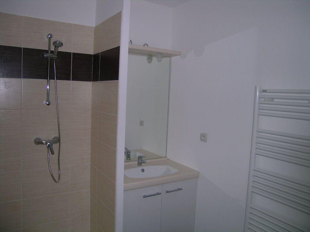 Appartement à louer 2 42.57m2 à Toulouse vignette-3