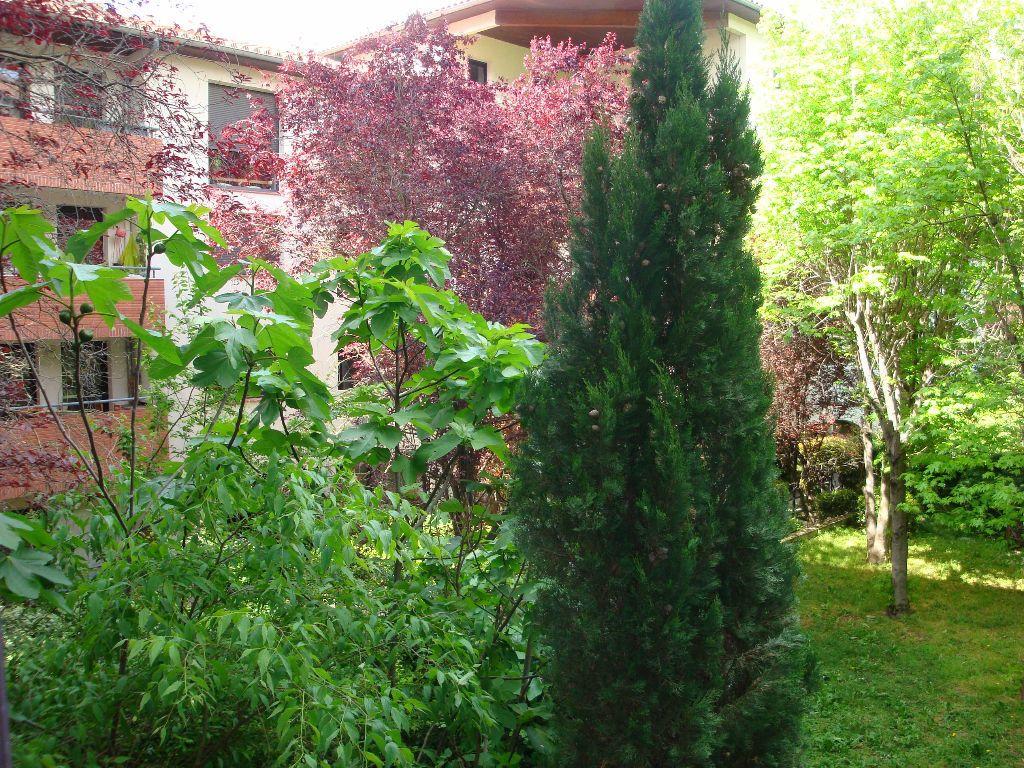 Appartement à louer 3 48m2 à Toulouse vignette-3