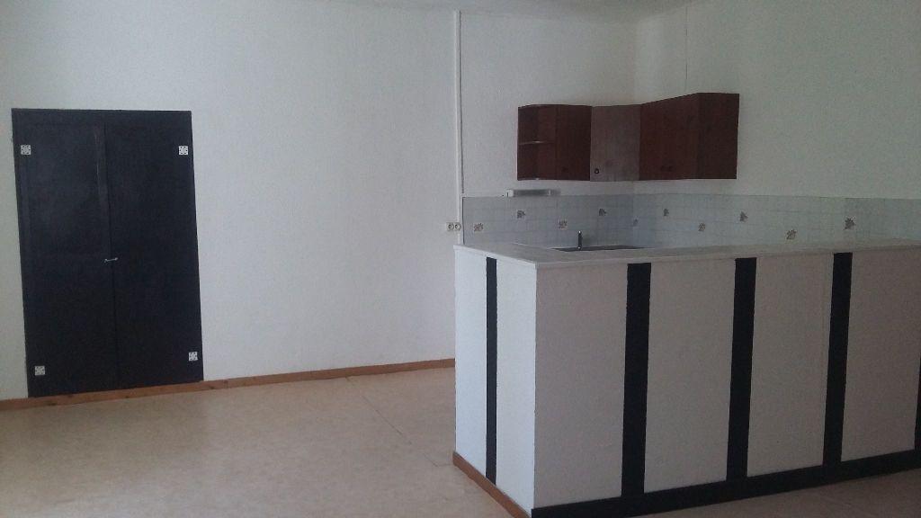 Appartement à louer 5 120m2 à Saint-Paul-Trois-Châteaux vignette-1