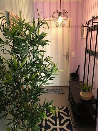 Appartement à louer 1 23.85m2 à Rosny-sous-Bois vignette-2