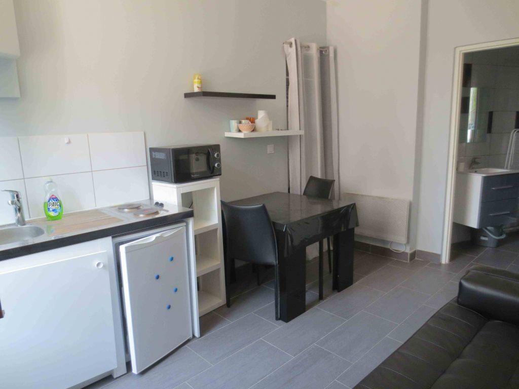 Appartement à louer 1 16.44m2 à Lyon 6 vignette-3