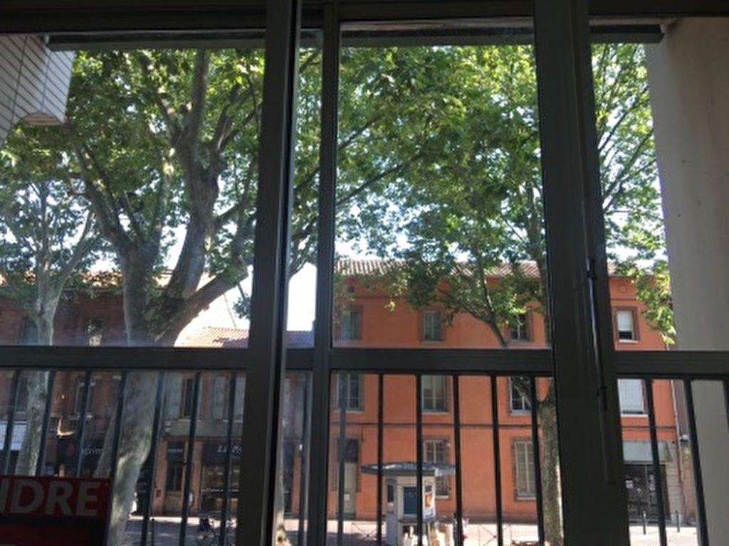 Appartement à louer 2 22.89m2 à Toulouse vignette-5