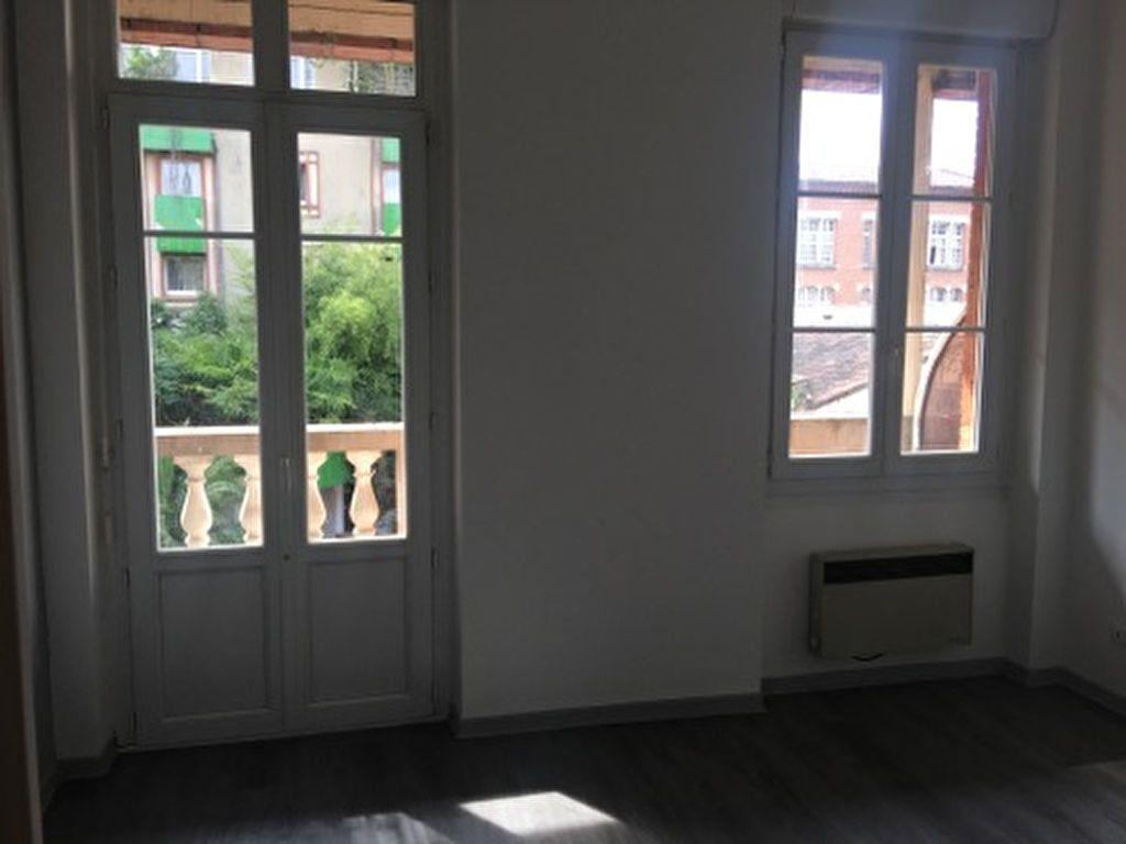 Appartement à louer 1 16.66m2 à Toulouse vignette-1