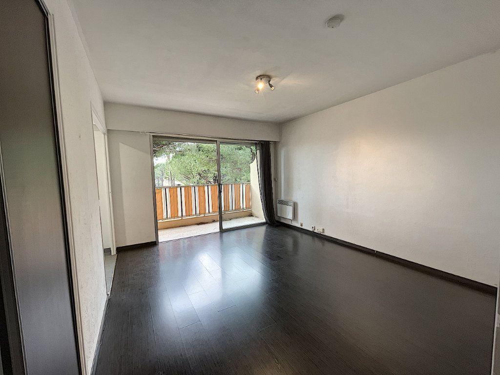 Appartement à louer 1 27.61m2 à Mandelieu-la-Napoule vignette-5