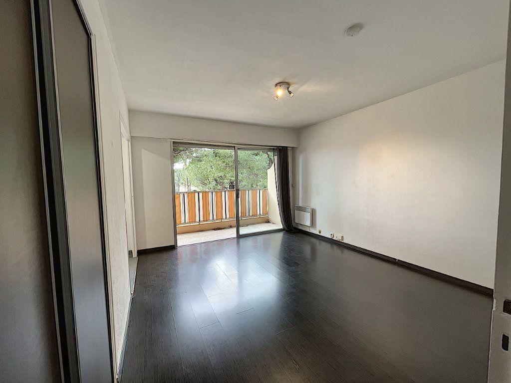 Appartement à louer 1 27.61m2 à Mandelieu-la-Napoule vignette-6