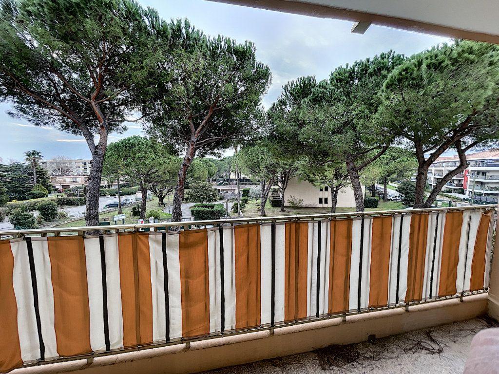 Appartement à louer 1 27.61m2 à Mandelieu-la-Napoule vignette-8
