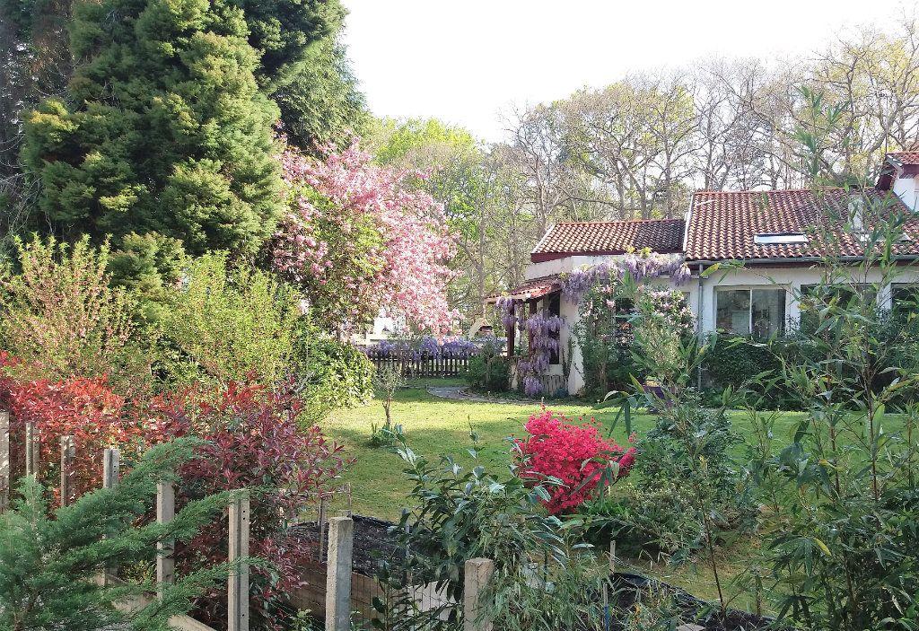 Maison à vendre 6 195m2 à Cambo-les-Bains vignette-2