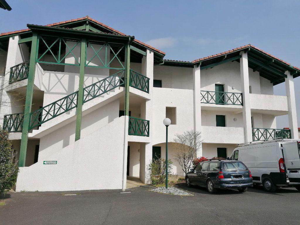 Appartement à louer 1 19.28m2 à Cambo-les-Bains vignette-9