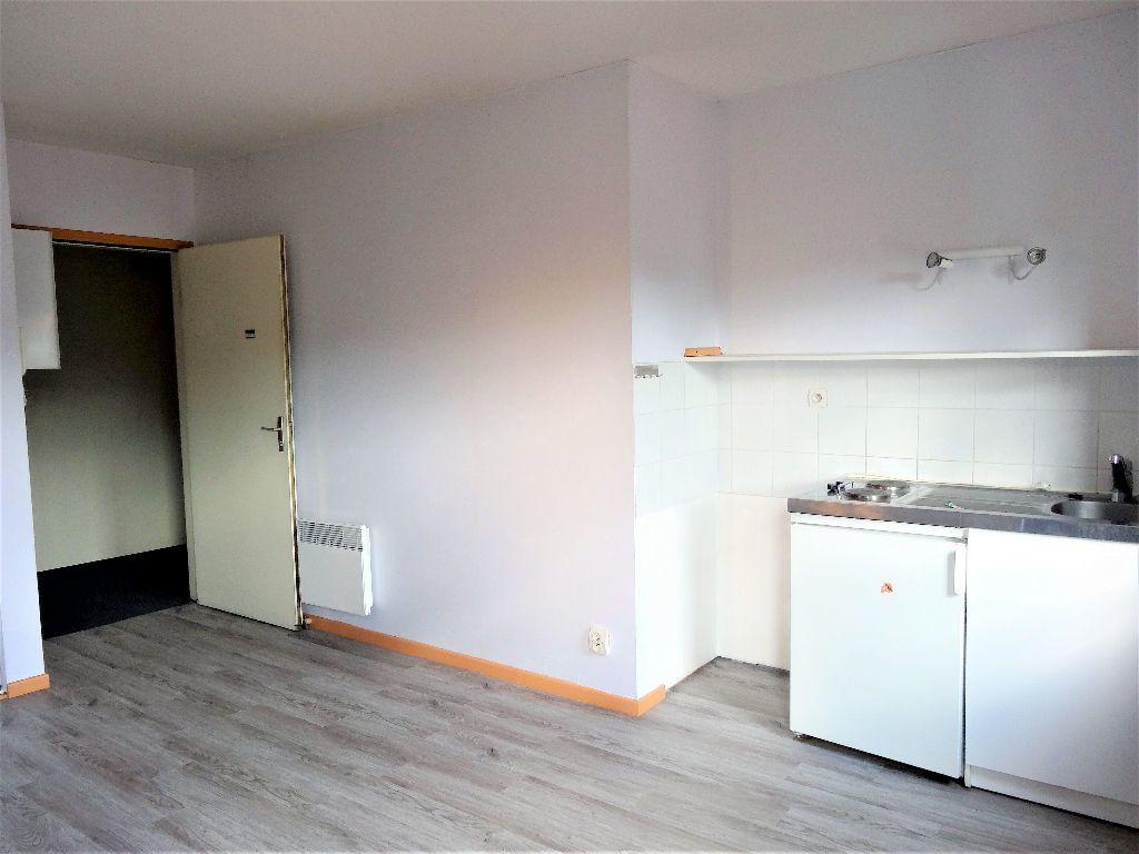 Appartement à louer 1 24m2 à Albi vignette-1
