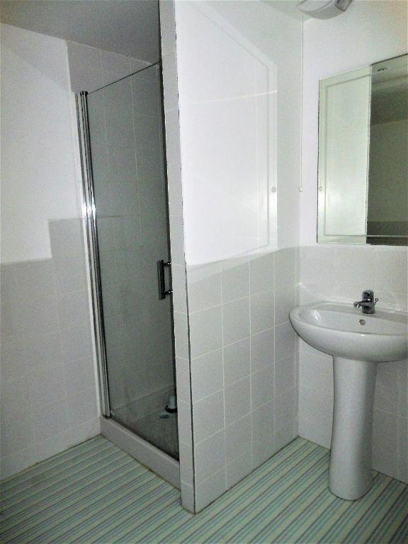 Appartement à louer 1 27m2 à Albi vignette-5