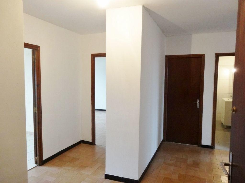 Appartement à louer 3 72m2 à Saint-Juéry vignette-1