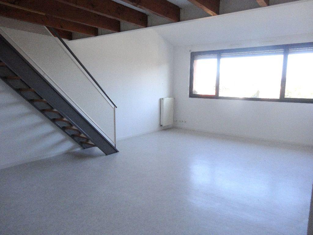 Appartement à louer 3 57m2 à Albi vignette-1