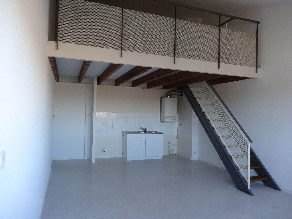 Appartement à louer 3 57m2 à Albi vignette-2