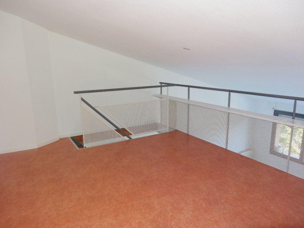 Appartement à louer 3 57m2 à Albi vignette-5