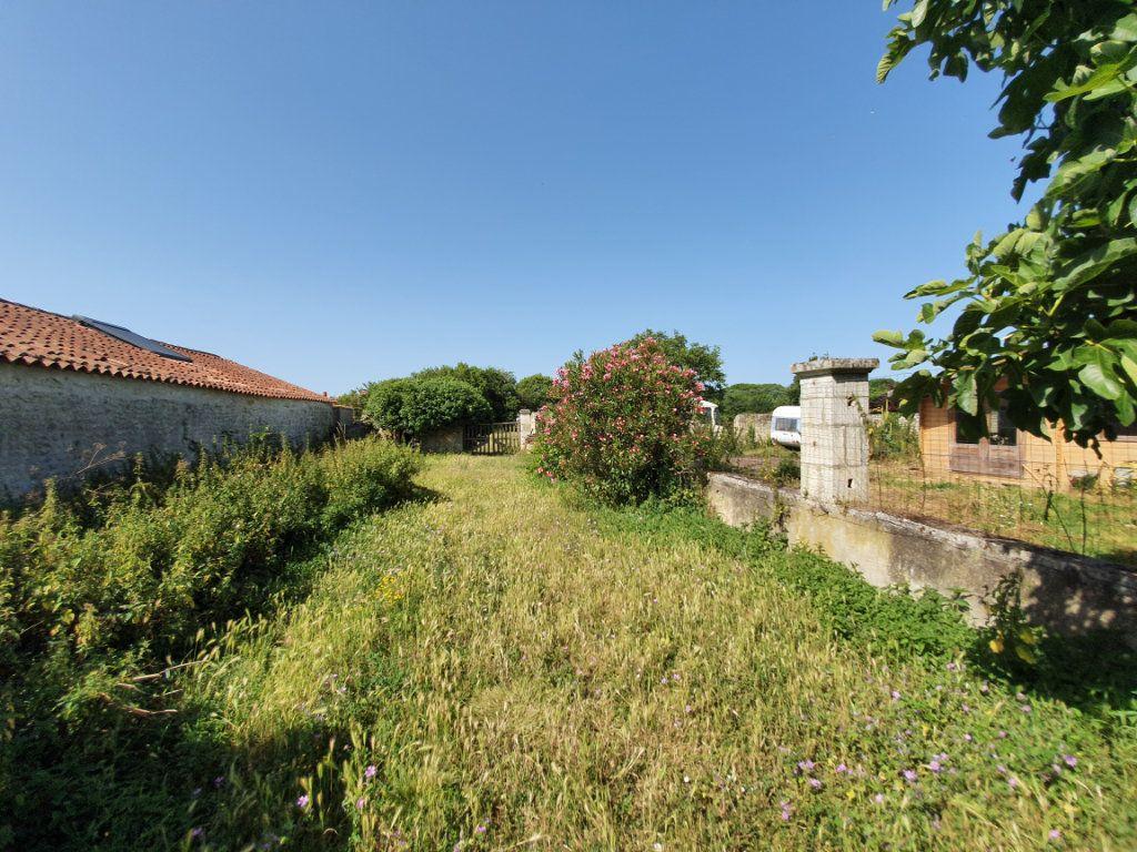 Terrain à vendre 0 915m2 à Dolus-d'Oléron vignette-4