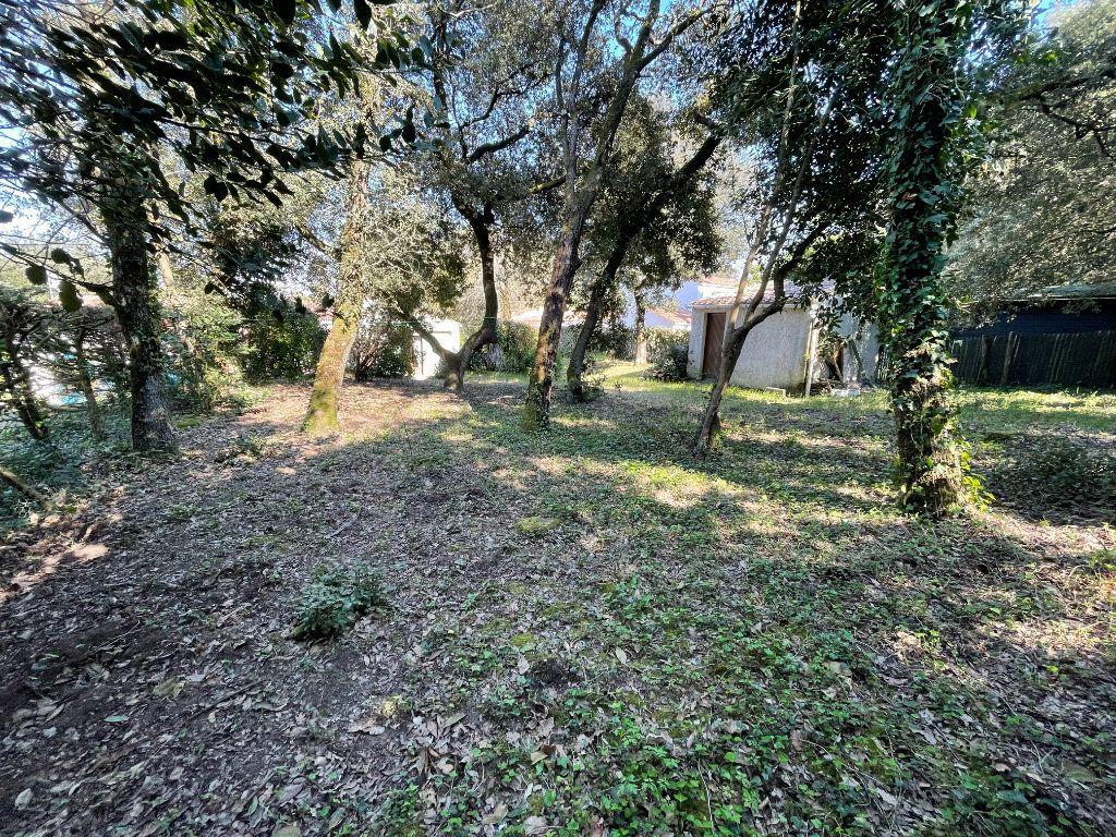 Maison à vendre 3 60.4m2 à Dolus-d'Oléron vignette-15