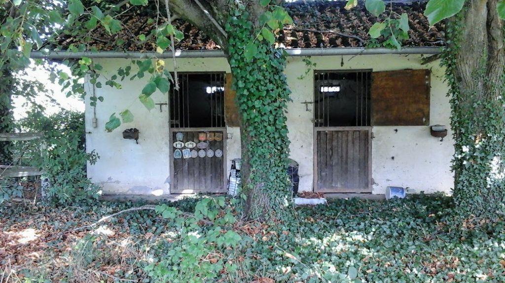 Maison à vendre 10 330m2 à Mirepeix vignette-3