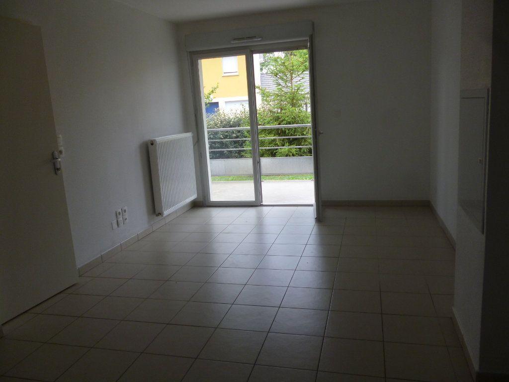 Appartement à louer 2 38m2 à Asson vignette-4