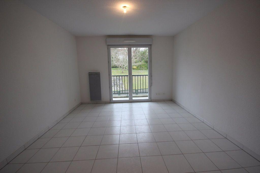 Appartement à louer 2 33m2 à Orthez vignette-3