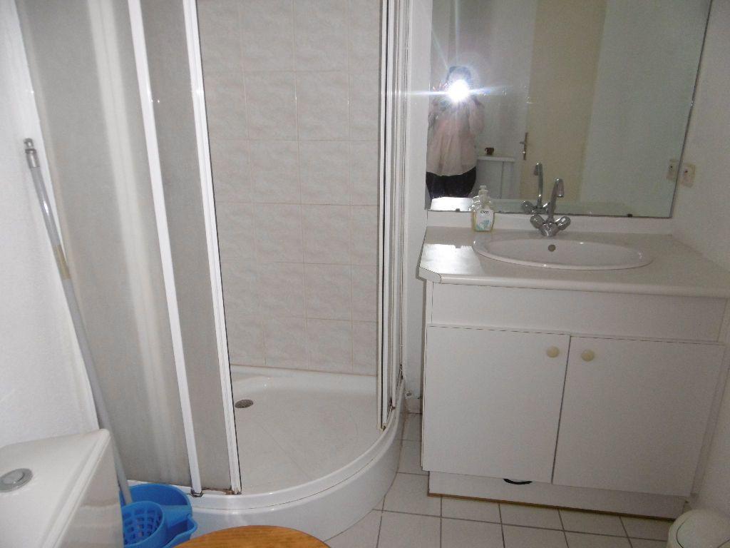 Appartement à louer 1 17.4m2 à Reims vignette-6
