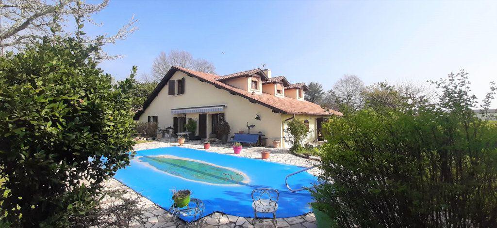Maison à vendre 9 237.51m2 à Saugnac-et-Cambran vignette-8
