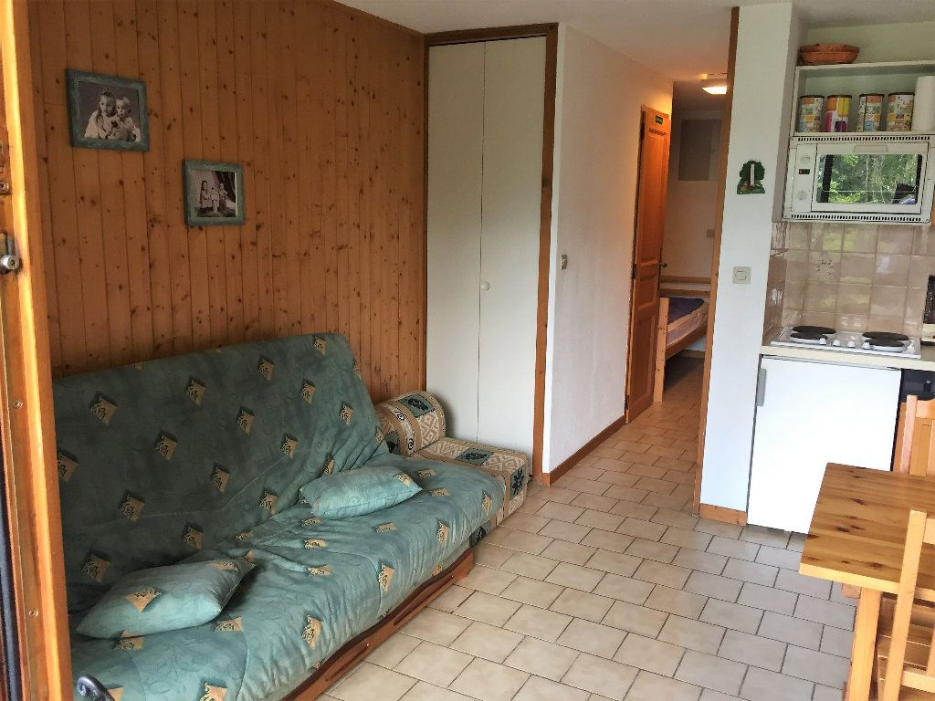 Appartement à vendre 2 24.55m2 à Morillon vignette-5