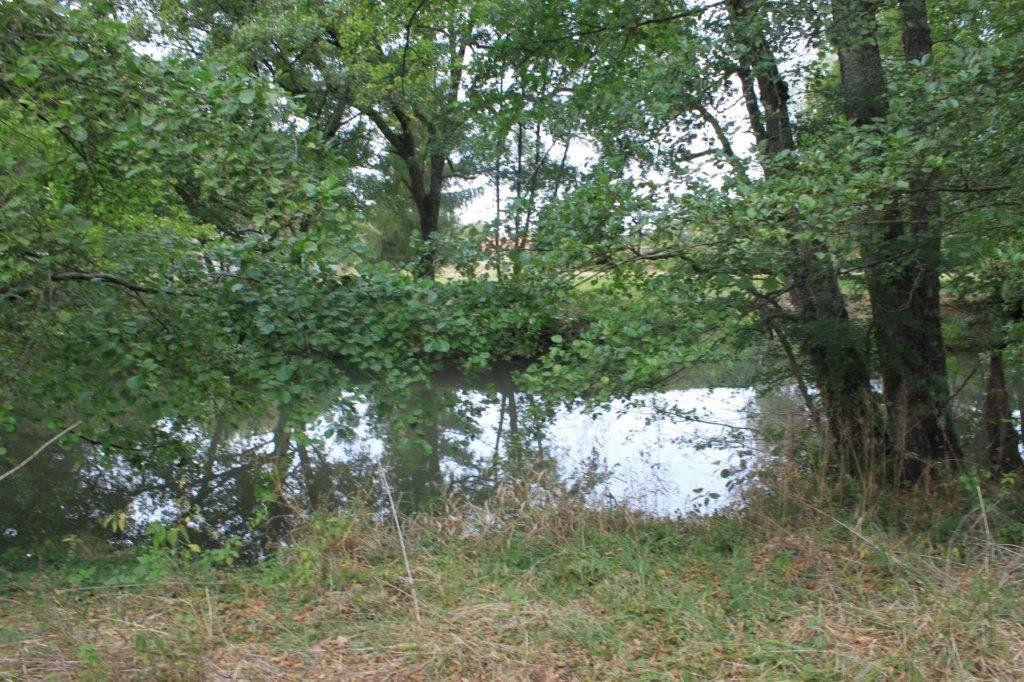 Terrain à vendre 0 13519m2 à Neung-sur-Beuvron vignette-1