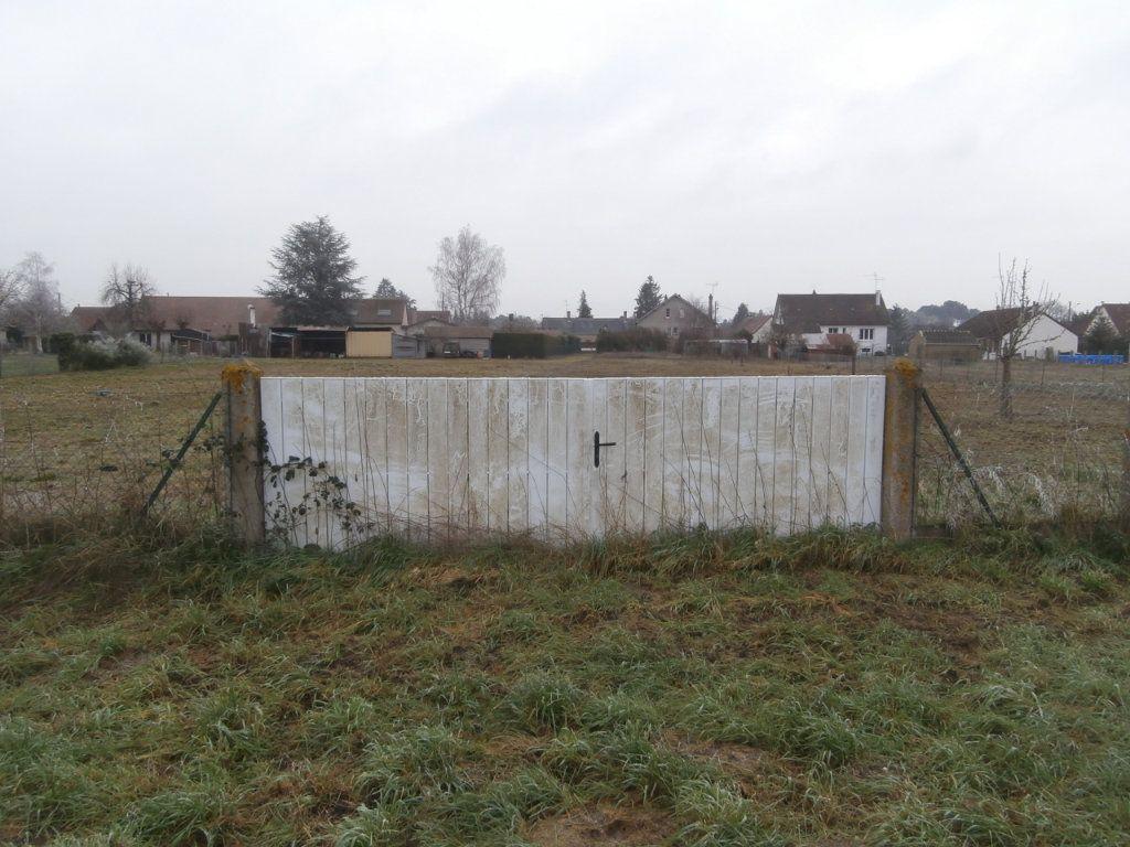 Terrain à vendre 0 3172m2 à Neung-sur-Beuvron vignette-2