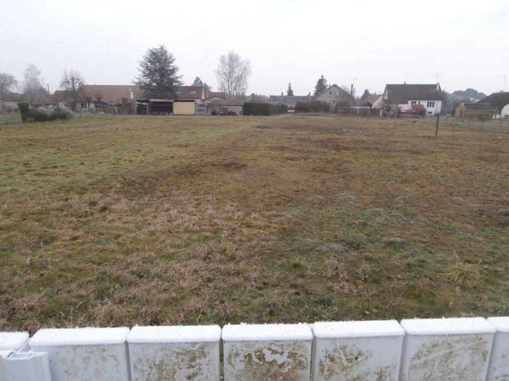 Terrain à vendre 0 3172m2 à Neung-sur-Beuvron vignette-3