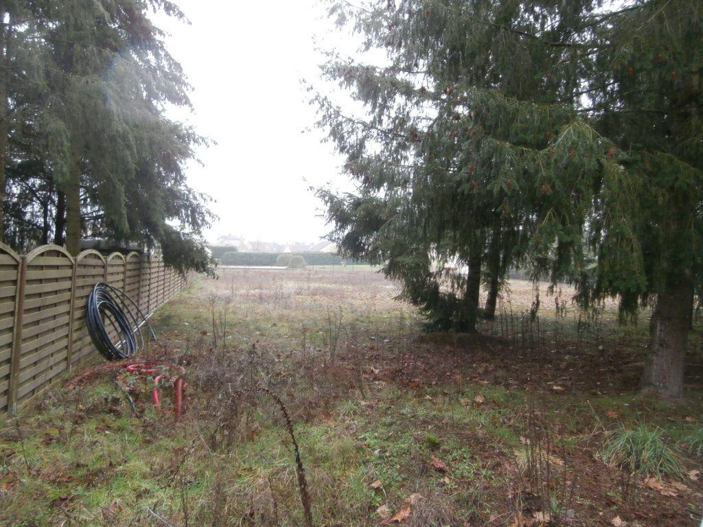 Terrain à vendre 0 2371m2 à Montrieux-en-Sologne vignette-2