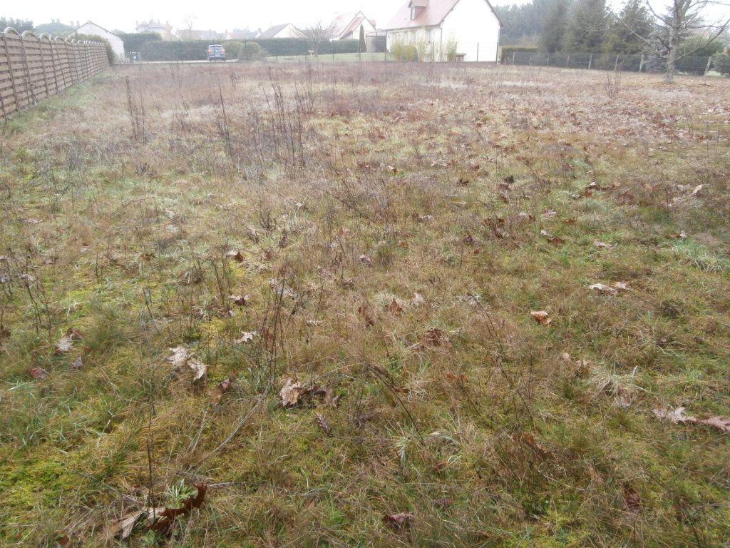 Terrain à vendre 0 2371m2 à Montrieux-en-Sologne vignette-4