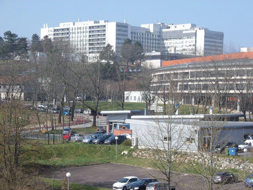 Appartement à louer 1 23.84m2 à Limoges vignette-4