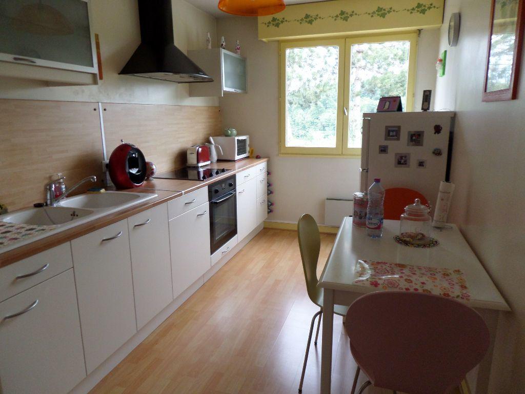 Appartement à louer 2 54m2 à Limoges vignette-1