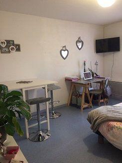 Appartement à louer 1 25.39m2 à Limoges vignette-3