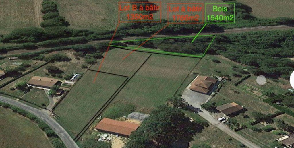 Terrain à vendre 0 1766m2 à Burgnac vignette-2