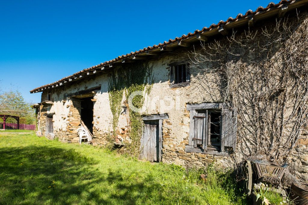 Maison à vendre 6 171.19m2 à Lavignac vignette-8