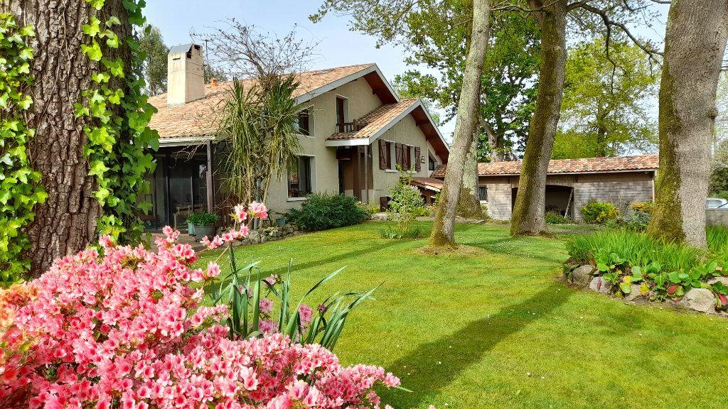 Maison à vendre 10 316m2 à Pomarez vignette-1
