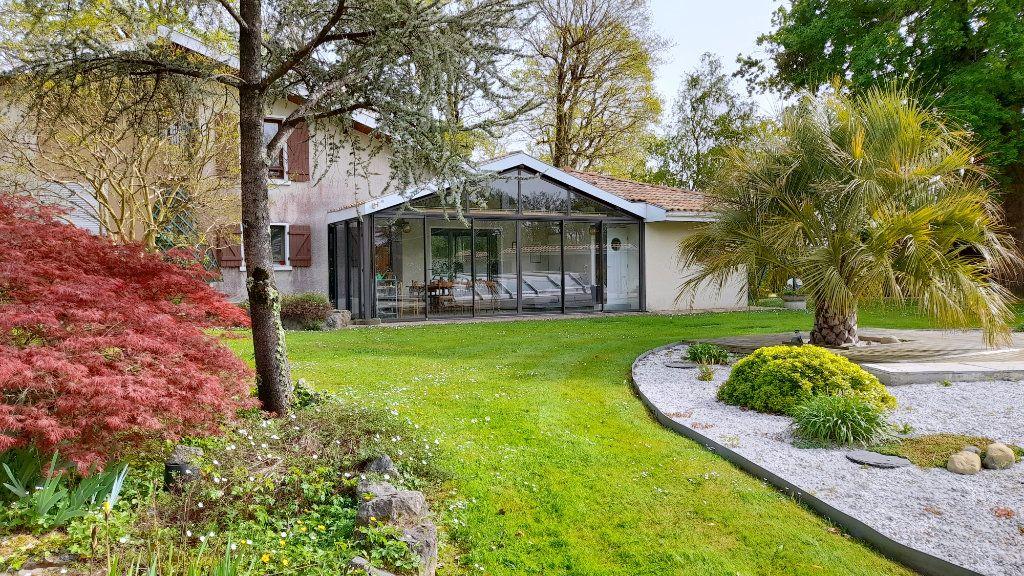 Maison à vendre 10 316m2 à Pomarez vignette-8