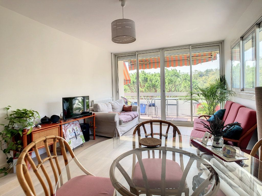 Appartement à louer 3 69m2 à Antibes vignette-2