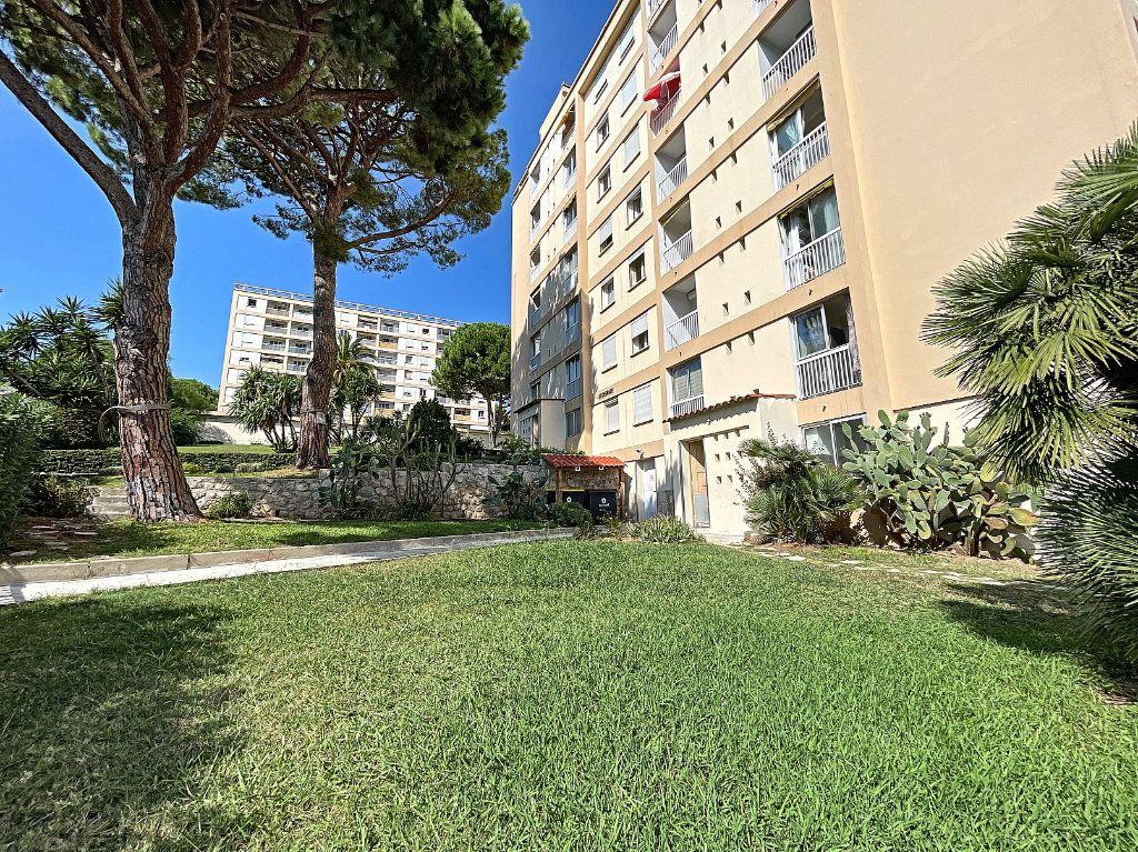 Appartement à louer 3 56m2 à Antibes vignette-1